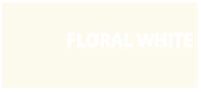 Color html Floral White hex #FFFAF0