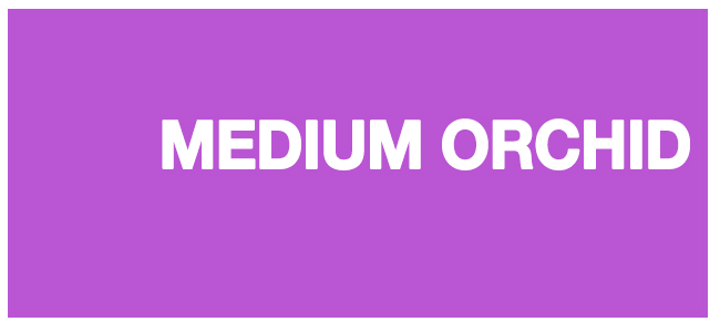 Color html Medium Orchid hex #BA55D3