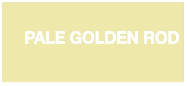Color html Pale Golden Rod hex #EEE8AA